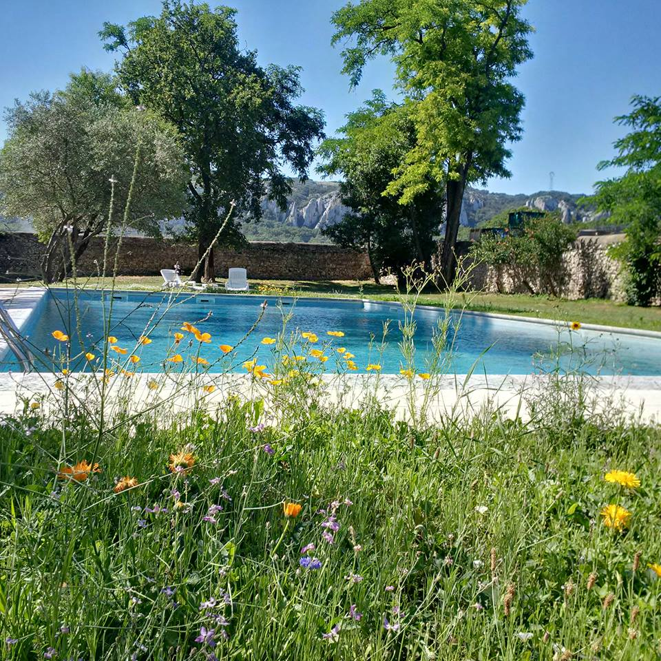 The swimming pool is open from April to October. You learn French intensively and you can relax at the same time !