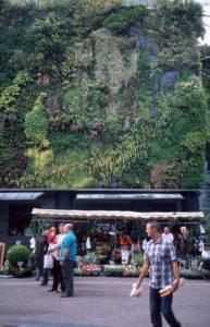 marché des halles d'avignon